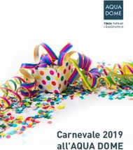 Carnevale 2019 all'AQUA DOME